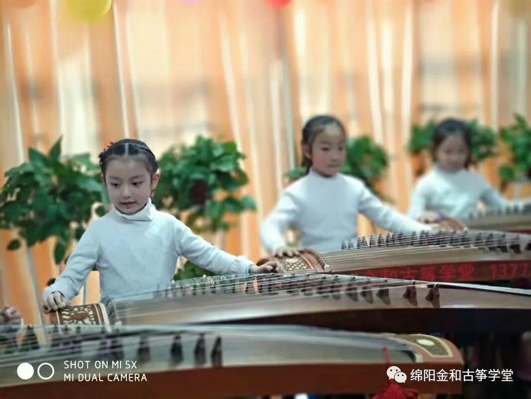 金和古筝集体演奏排练课学员风采